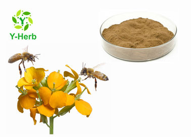Pure Green Propolis Powder In Bulk Nutrition Supplement Water Soluble