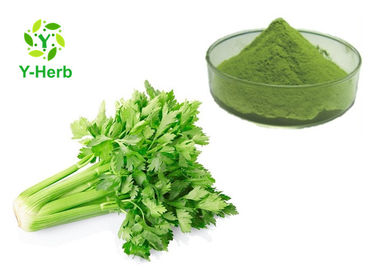 Pharmaceutical Vegetable Extract Powder Juice Concentrate Extract Celery Powder