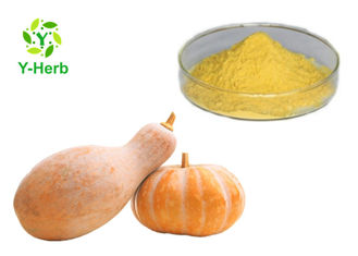 Water Soluble Pumpkin Powder Organic Cushaw Fruit Flavor Concentrate